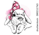 Bunny In A Pink Headband....