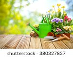 gardening tools and flowers on... | Shutterstock . vector #380327827