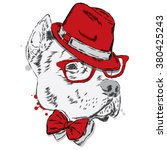 pit bull in a hat and tie. dog... | Shutterstock .eps vector #380425243