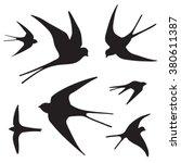 swallow silhouette set | Shutterstock .eps vector #380611387