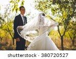 beautiful bride in the garden | Shutterstock . vector #380720527