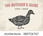 cut of meat set. poster butcher ... | Shutterstock .eps vector #380726767