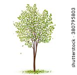 green tree with leaves on white ... | Shutterstock .eps vector #380795803