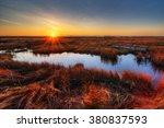 Orange Sunset Illuminating The...