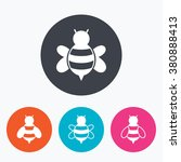 honey bees icons. bumblebees...   Shutterstock .eps vector #380888413