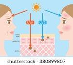infographic skin illustration....   Shutterstock .eps vector #380899807