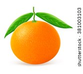 tangerine with leaves isolated... | Shutterstock .eps vector #381003103