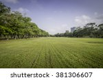 green grass field in the park | Shutterstock . vector #381306607