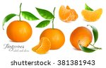 fresh tangerines with green... | Shutterstock .eps vector #381381943
