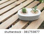Mini Cactus In Stone Pot  Lath...