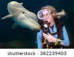 friendly dolphin underwater on... | Shutterstock . vector #382239403