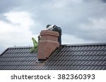 Worker On The Roof Repairs...