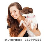 Stock photo heart warming photo of a little crossbreed dog in the arms of a beautiful young girl licking her 382444393