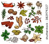 Sketch Herbs And Spices Color...