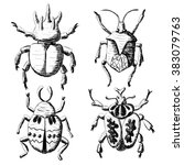 Hand Drawn Sketch Beetles Set ...