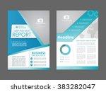 report  flyer  brochure. design ...