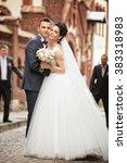 beautiful bride and groom... | Shutterstock . vector #383318983