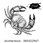 vector vintage crab drawing.... | Shutterstock .eps vector #383322967
