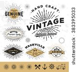 vintage sunburst logo and label ... | Shutterstock .eps vector #383395033