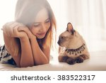 Stock photo asian woman and cat laying on sofa with window light 383522317