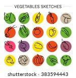vector hand drawn vegetable... | Shutterstock .eps vector #383594443