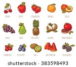 colorful fruits set | Shutterstock .eps vector #383598493