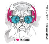 dog in glasses and headphones.... | Shutterstock .eps vector #383744167