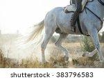 detail of running spanish horse ... | Shutterstock . vector #383796583