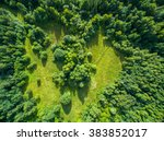 Aerial View Forest - Fine Art prints