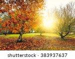 a beautiful peaceful autumn... | Shutterstock . vector #383937637