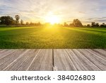 rice field with vintage style... | Shutterstock . vector #384026803