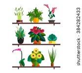illustration of houseplants ... | Shutterstock .eps vector #384282433