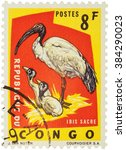 "Small photo of MOSCOW, RUSSIA - FEBRUARY 20, 2016: A stamp printed in Congo shows African sacred ibis (Threskiornis aethiopicus), series ""Protected Birds"", circa 1963"