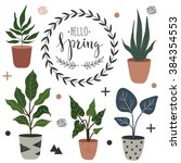 spring set with ficus and other ... | Shutterstock .eps vector #384354553