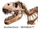Tyrannosaurus Rex Skeleton On...