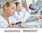dental laboratory | Shutterstock . vector #384603457