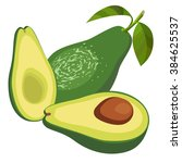 avocado  half of avocado on... | Shutterstock .eps vector #384625537