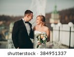 stylish beautiful wedding... | Shutterstock . vector #384951337