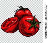 sketched tomato. hand drawn... | Shutterstock .eps vector #385050967