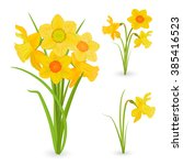 Collection Bouquet Of Daffodil...