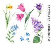 spring floral set. collection... | Shutterstock . vector #385461193