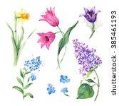Spring Floral Set. Collection...