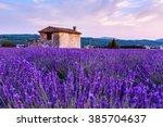 lavender field summer sunset...   Shutterstock . vector #385704637