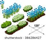 Isometric Flowers In Vector