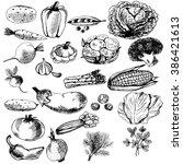vegetables set. sketch style.... | Shutterstock .eps vector #386421613