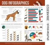 dog infographics set   Shutterstock . vector #386483023