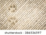 Dog's Footprints On Cement...