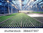 Agribusiness Greenhouse...