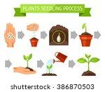 seedling infographics with... | Shutterstock .eps vector #386870503