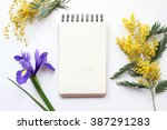 spring flowers mimosa and iris... | Shutterstock . vector #387291283